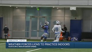 Danny Amendola says Lions excited to see Matthew Stafford in games
