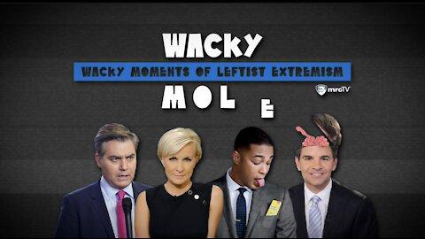 Media 'Whips' Up Lies & Cries To Help Biden - Wacky MOLE