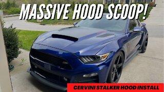 S550 Mustang Cervini Stalker Hood Install ***MASSIVE HOOD SCOOP***