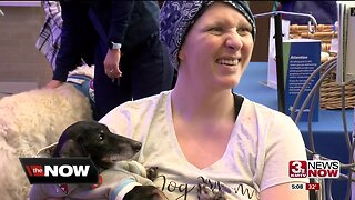 Therapy dogs comfort patients at Bergan Mercy