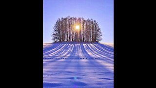 Beautiful shooting of winter in good quality with quiet music