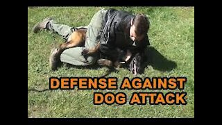 how to defend against dog