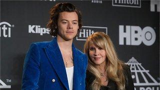 Stevie Nicks Accidentally Said Harry Styles Left NSYNC