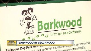 New dog park opens in Beachwood