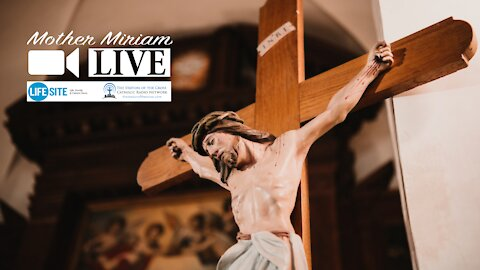 Christians must 'follow Our Lord to the Cross' daily, abandoning worldliness
