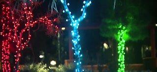 LV Festival of Lights soft opened last night