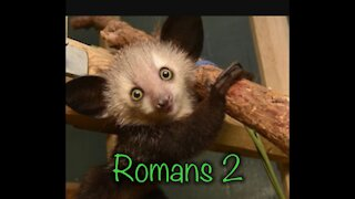 Read the Bible with me. Romans 2
