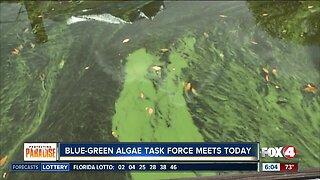 Algae task force meeting Thursday