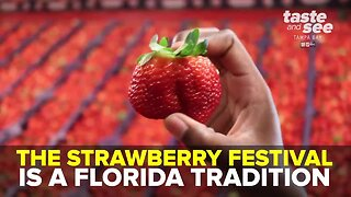 2020 Florida Strawberry Festival | Taste and See Tampa Bay
