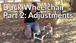 Building a Duck Wheelchair Part 2: Adjustments