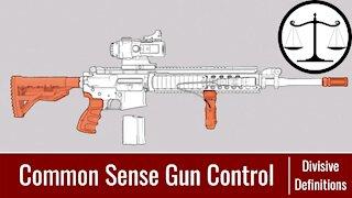 Divisive Definitions: Political Vocabulary Defined | Ep 1: Common Sense Gun Control