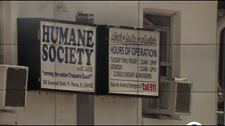 Humane Society of St. Lucie County vice chair opens up about criminal investigation, negotiations, shelter struggles
