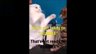 """Let's get ready to """"Rumble"""""""