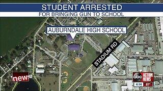 Polk student arrested after bringing loaded gun to school