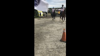 Horse competition in Taiwan