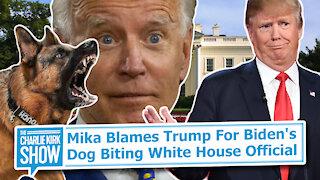 Mika Blames Trump For Biden's Dog Biting White House Official