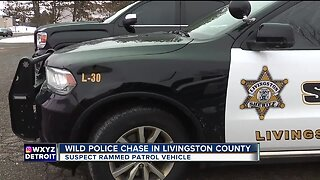Wild police chase in Livingston County