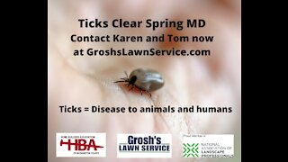 Ticks Clear Spring MD Lawn Care Treatments