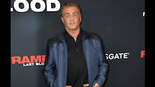 Sylvester Stallone won't reprise iconic Rocky role in new Creed movie