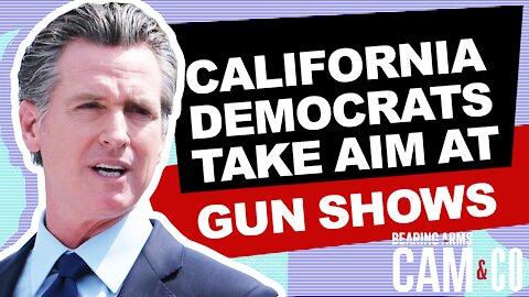 California Democrats Take Aim At Gun Shows