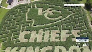 Fans welcome at five-acre Chiefs Kingdom corn maze