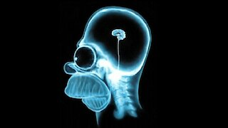 Mind Blowing Facts: Shrinking Brain