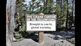 Climate Crisis?