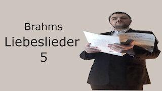 Brahms Liebeslieder - Die grüne Hopfenranke
