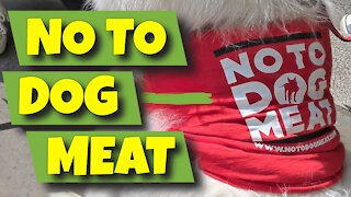 NO TO DOG MEAT PROTEST - LONDON, ENGLAND - 19TH JUNE 2020