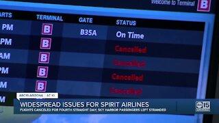 Sky Harbor seeing Spirit flight cancellations
