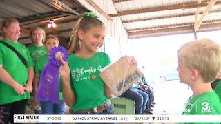 Sarpy County Fair returns
