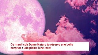 Tu pourras admirer l'énorme et brillante pleine lune rose ce soir au Québec