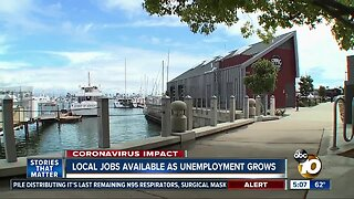 Jobs in San Diego available as unemployment claims soar