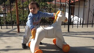 Little Baby are playing with horse he is not more 1 years