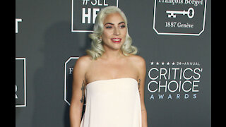 Lady Gaga's alleged dognappers arrested