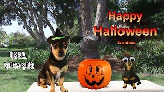 @pixeladog Happy Halloween