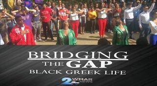 Bridging the Gap: Black Greek Life