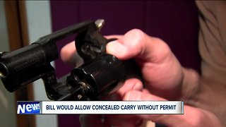 Proposed 'constitutional carry' measure would eliminate need for gun safety training
