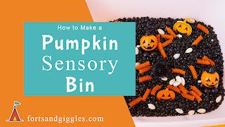 How to Make a Pumpkin Sensory Bin