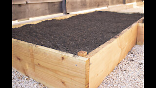 BUILDING OUR VEGGIE GARDEN - PHASE TWO