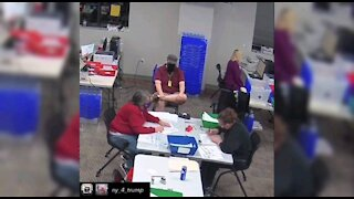 Election fraud videos