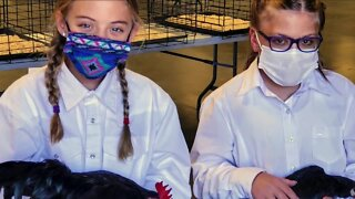 Arapahoe County hosting 4-H competitions