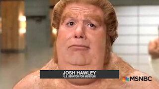 JOSH HAWLEY did it! He's the one!