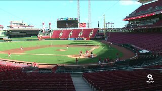 Reds Gameday Experience
