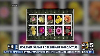USPS stamps honor cactus flowers