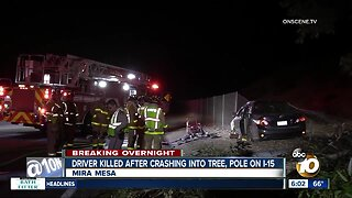 Woman dies after crashing into tree, light pole in Mira Mesa