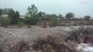 Impressionanti inondazioni colpiscono il Nuovo Messico