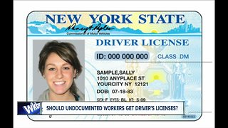 Should illegal immigrants have legal licenses?