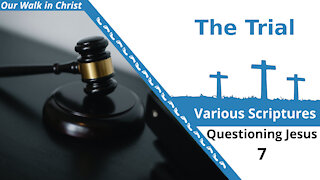 The Trial | Questioning Jesus 7