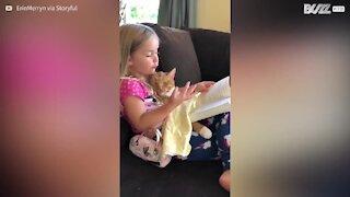 Tenera bambina legge una fiaba al suo gatto per farlo addormentare!